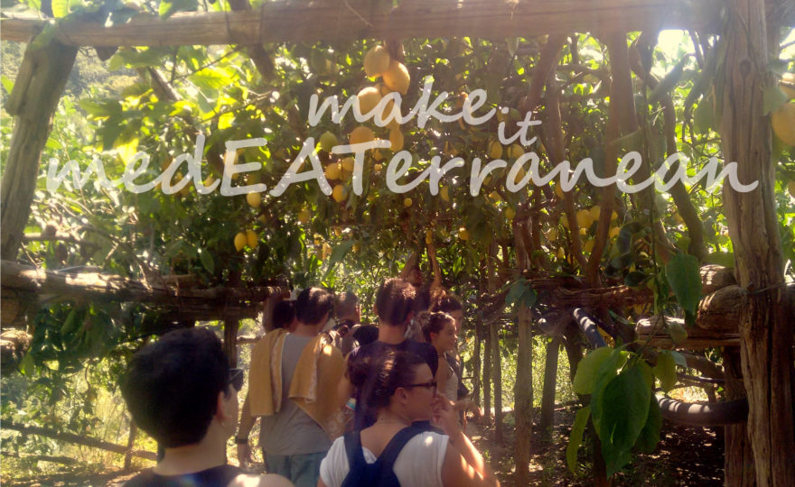 MAKE IT MedEATerranean | ERASMUS+ (2016)