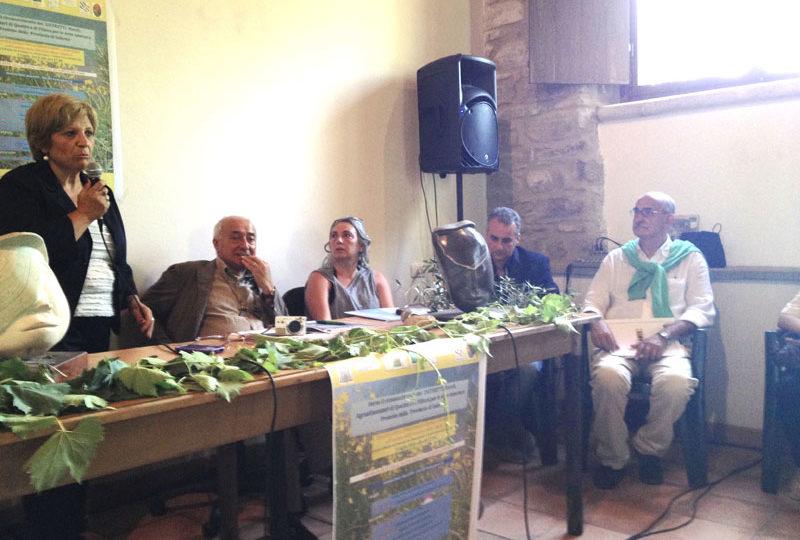 Candidatura Mab Unesco Costiera amalfitana e Distretti rurali: parte la filiera dell'olio dal cuore del Cilento